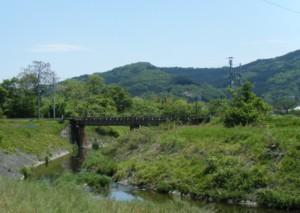 2010_05160012s